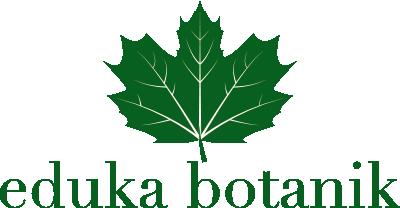 eduka-botanik-logo